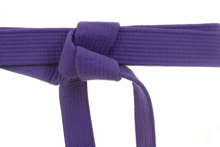 450-98730848-karate-purple-belt