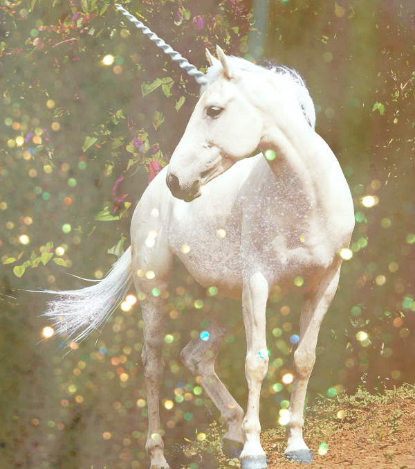 unicorn_by_astateofconfusion-d62hzqb
